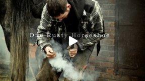 One Rusty Horseshoe