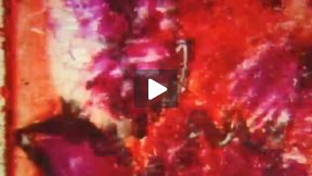 Paint Paint! Short experimental film by Los Angeles based independent filmmaker Charles Pieper