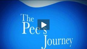 Pee's Journey