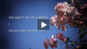 One Minute in the Gardens | Holga Lens for DSLR Test