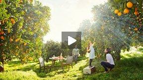 Erik Almås & Westin Hotels & Resorts - Behind The Scenes