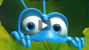مدیریت بر اساس زندگی مورچه
