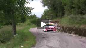 48° Rally Eastern Alps 2012 - Claudio De Cecco
