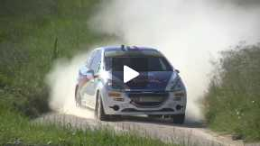 20° Rally Adriatico 2013 Andreucci-Andreussi Summary