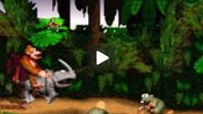 Lets Play: Donkey Kong Country Jungle HiJinx