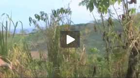 SE BUSCA... Centro América_Nicaragua_Capítulo 5