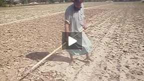 FARMOUR