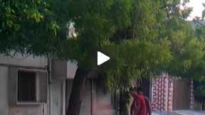 street cricket part 4