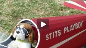 Bear pilot - Stits Playboy says Hi!