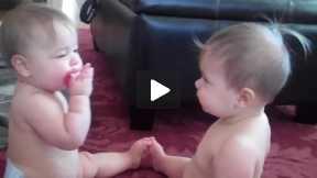 Baby Fight! LOL