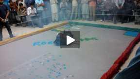 Robotics War at Department of  Electronics Engineering IIU, Islamabad.