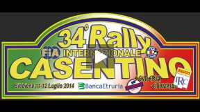 International Rally Casentino 2014