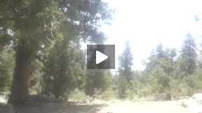 Ziyaarat nice video