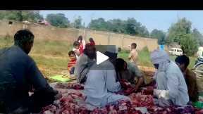 Eid ul Azha Celebrations